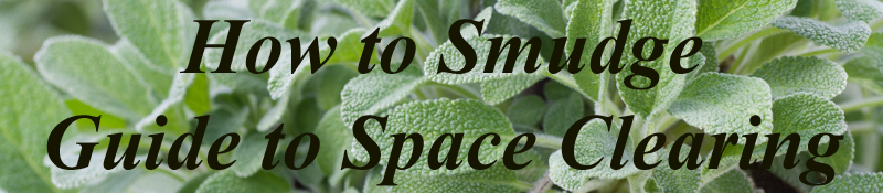 White Sage used to Smudge a home in space clearing